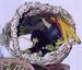wisteria basket, swiss chard, white eggplant, purple eggplant, okra